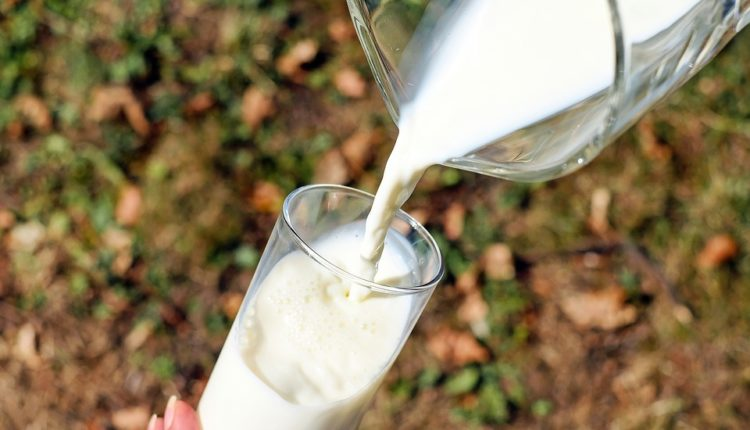 Got milk and…got Osteoporosis? How's that?