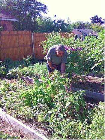 permaculture-commun-garden